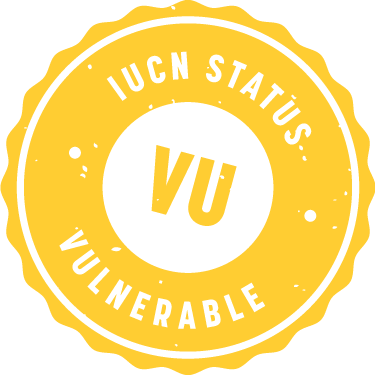 iucn_badge_vulnerable