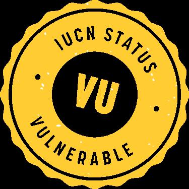 iucn_badge_vulnerable