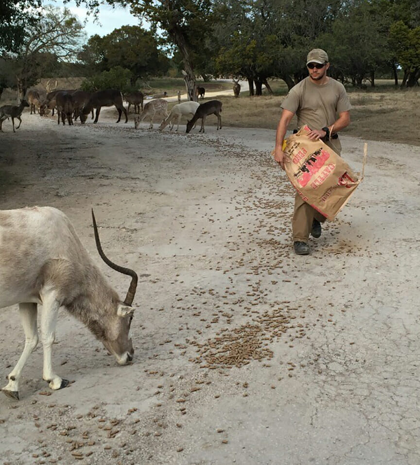 mike-and-addax